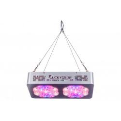 1 modułowy case  + Moduł oświetleniowy na wzorst